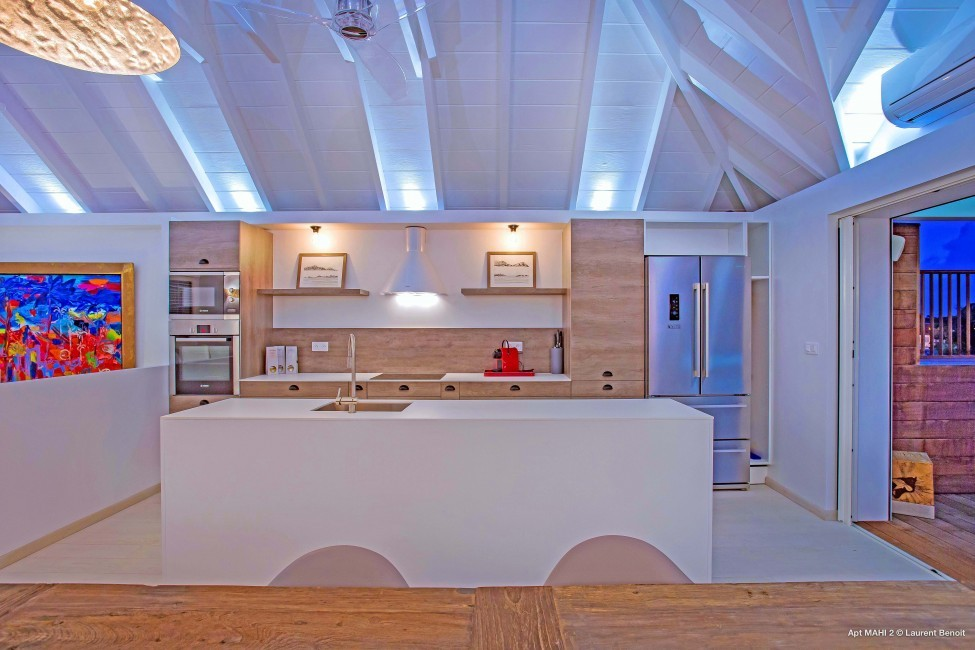 St. Barths:RiveGauche_ApartmentPerla:kitchen56.jpg